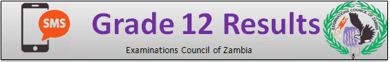 ECZ G12 Results 2020 Zambia