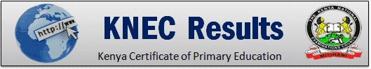 How to check KNEC 2019 Result Slip Portal?